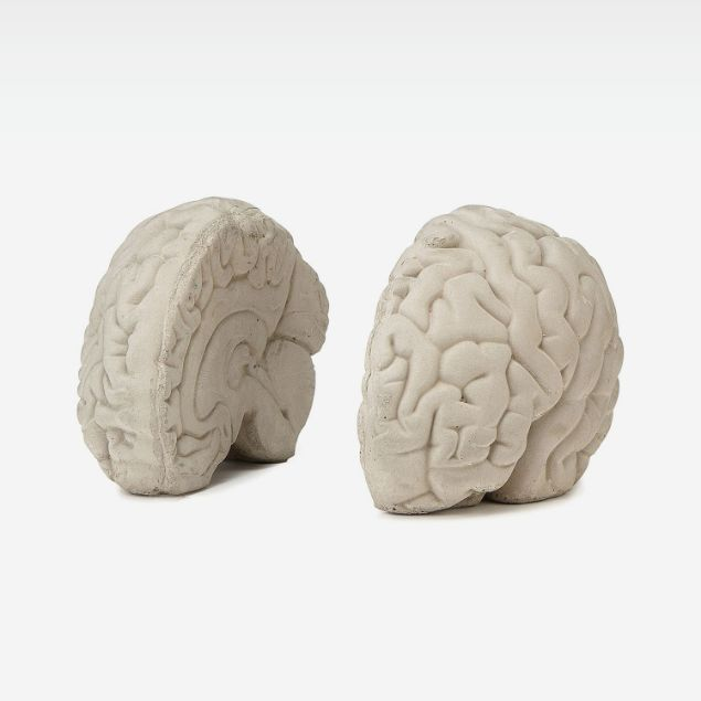 Picture of Brain Book Holder